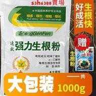 快速生根粉植物通用強力生根粉扡插發根用生根劑樹木果樹生根液水