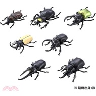 7.TOMICA動物 ANIA 森林王者 甲蟲&鍬形蟲精選 Vol.2