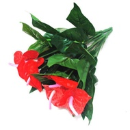 Anthurium, green potted anthurium flowers indoor green plants balcony office desktop artificial flowers bonsai