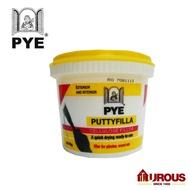 PYE Putty Filla Fast Dry Filler Exterior & Interior Crack filler