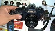 CANON T50 古董 相機