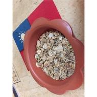 可批發零售 當歸種子 當歸 薜 山蘄 白蘄 (農產種子郵購讚)