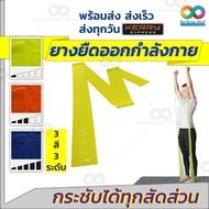 (มี 3 ระดับแรงต้าน) RAINBEAU ยางยืดพิลาทีส อเนกประสงค์ Pilates Band ยางยืดออกกำลังกายแบบฟิตเนส มี 3 ระดับแรงต้าน