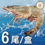 活凍特級草蝦6尾入/400g±10%HACPP認證廠 蝦  草蝦 大草蝦 新鮮 野生蝦 蝦 中秋 烤肉  快速出貨