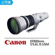 【Canon】EF 800mm F5.6L IS USM 超遠攝定焦鏡頭(公司貨)
