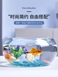 Kreatif Akuarium Ekologi Bulat Kaca Tangki Ikan Emas Besar Tangki Kura-kura Vas Hidroponik Landskap Mini Kecil