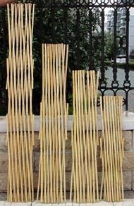 夯貨下殺! 戶外小柵欄圍欄月季植物爬藤竹子花支架花園竹竿陽台伸縮竹條籬笆