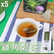 【Mr.Teago】雞角刺茶/養生茶/養生飲-3角立體茶包-5袋/組(27包/袋)