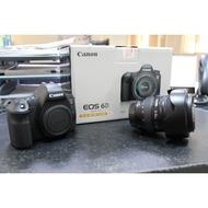 Canon EOS 6D + 24-105 F4L(公司貨)二手(快門數36xxx)