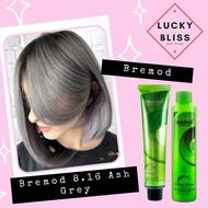 Lucky Bliss Bremod 8.16 Ash Gray/Ash Grey Fashion Color+ Bremod 12% Oxidizer 100ml FREE