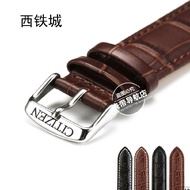 Citizen leather watch strap men and women watch ac