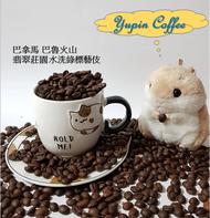 【藝伎咖啡】巴拿馬  翡翠莊園  具備競標豆水準 綠標水洗藝妓 SHB-咖啡豆(客製烘焙)