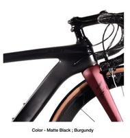 Alcott Ascari Team Full Shimano Ultegra Roadbike Bicycle (with FREE Gifts)