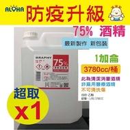 (現貨) 75% 乙醇酒精500CC/瓶X2 乾洗手 隨身瓶 手部清潔 現貨當天寄