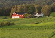 Large farmhouse with wood fired pizza oven Nome, Telemark, Norway