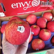 แอปเปิ้ลเอนวี่ ENVY APPLE (10ลูก/ไซส์L) (NewZealand/USA) ~ลดพิเศษ~ส่งฟรี~ Apple Premium กรอบ อร่อย ! แอปเปิ้ลเอนวี่ แอปเปิ้ล เอนวี่ แอปเปิ้ลสด แอปเปิ้ล ผลไม้
