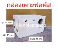 กล่องเพาะนก(กล่องฟอพัส+นกระจอกชวา)รังเพาะนก กล่องนอน บ้านนก หงส์หยก เลิฟเบิร์ด ค็อกคาเทล ฟอพัส ฟินซ์ ราคาโรงงานเลยจ้า