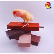 MY PET BIRD鸚鵡高級站台 W730