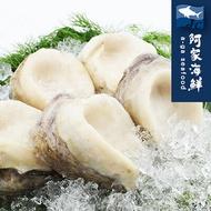 生凍智利大鮑魚 200g±10%/單顆(規4/6) 鮑魚 比罐頭美味 燉湯 熬粥 南美洲急速冷凍 快速出貨