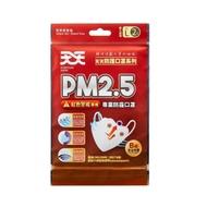天天PM2.5專業防霾口罩 B級 (2入)