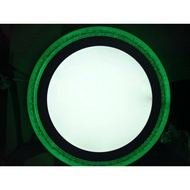 24W SURFACE DOWNLIGHT (WH+GREEN) 7UFE