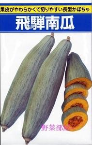 【野菜部屋~】Z06 貴族南瓜種子2粒 , 肉質鬆軟綿密 , 有栗子香味 ,每包40元~