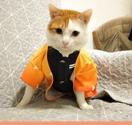 鬼滅之刃 寵物衣服 貓咪衣服 狗狗衣服