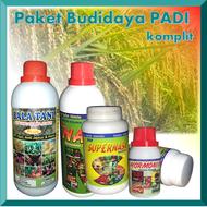 paket komplit pupuk untuk padi sawah / pupuk padi terbaik / pupuk tanaman sayuran / pupuk padi sawah / pupuk ab mix hidroponik sayuran daun / pupuk padi hanamaru / pupuk tanaman sayuran dan buah / pupuk padi cair / pupuk sayuran