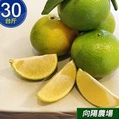 《預購-向陽農場》鮮採台南關子嶺高山帝王柑(30台斤/箱)