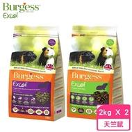 【Burgess伯爵】高機能鼠飼料《天竺鼠-薄荷鮮味/黑加侖&奧勒岡葉》2KG(2包組)