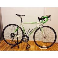 2013款 Primavera FESTINO 白綠款 尺寸50公分(適合168-173) 27速好爬坡
