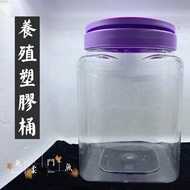 ▶魚柔鬥魚◀鬥魚養殖桶/塑膠桶/鬥魚缸