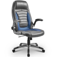 Blue Office Chair Laptop Desk Ergonomic Swivel Executive Adjustable Computer High Back Chair with lift arms