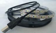 USB 2米 5050燈條 5V 贈插頭 LED燈條 防水燈條 5V USB led 燈條 行動電源燈條