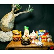 蔥薑蒜-象牙宮-藝術-創作-阿良珍藏屋