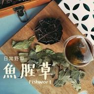 【日常野草】靜心明朗 魚腥草青草茶(5gX10包/盒)