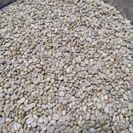 咖啡生豆 瓜地馬拉 薇薇特南果