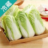 越南鮮採娃娃菜200G/包