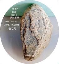 編號7 #園藝  #造景  #魚缸  #石頭  #天然石頭  #台灣  #天然  郵局免運費