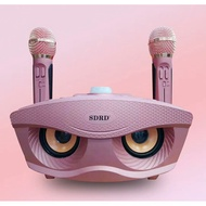 SDRD SD-306 一體式雙人合唱  K歌 無線 麥克風 藍芽 麥克風 貓頭鷹