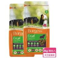 【Burgess英國伯爵】天竺鼠飼料-薄荷鮮味 2KG-兩包入