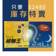 【 日夜版-庫存特賣 】PPLS超智王 日夜版 90入 台灣綠蜂膠  現貨 公司貨 聰明寶