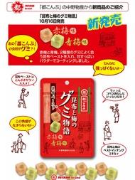 日本 中野物産 昆布と梅のグミ物語 昆布双梅軟糖 45g
