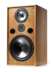 『嘉義華音音響』英國原裝 Spendor SP100R2 喇叭 (G1000最新版) 上瑞保固