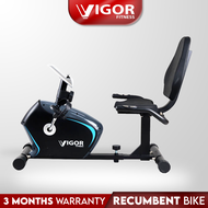 Recumbent Magnetic Exercise Physical Therapy Bike VF8304R
