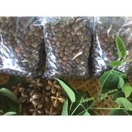 【微映農產】2020_3月開賣 新鮮印加果種子(種子優惠價每份50顆/100元)/南美油藤種子