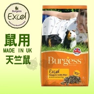 《英國伯爵Burgess》高機能鼠飼料 - 天竺鼠 2kg
