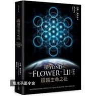 蝦米 現貨 現貨 梅爾卡巴-超越生命之花 Beyond The Flower Of Life