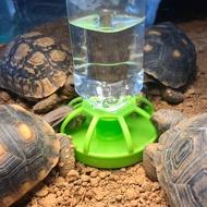陸龜超市陸龜隔層水盆附水壺