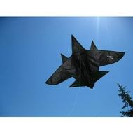 飛機風箏成人中大型戰斗機風箏